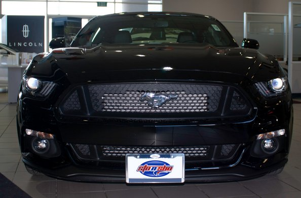 Ford Mustang 50th Anniversary Sto N Sho Removable License