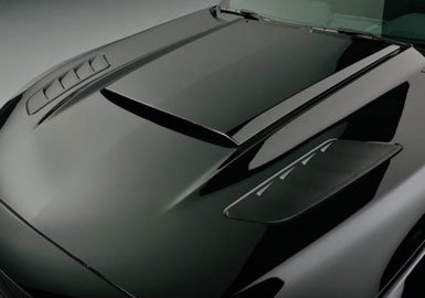 Ford Mustang Roush Painted Hood Heat Extractors